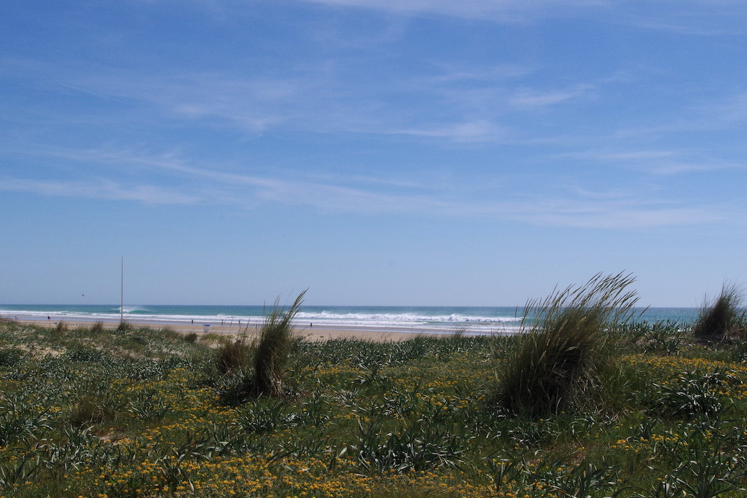 A picture of beach in Conil de la Frontera near la Ola restaurant