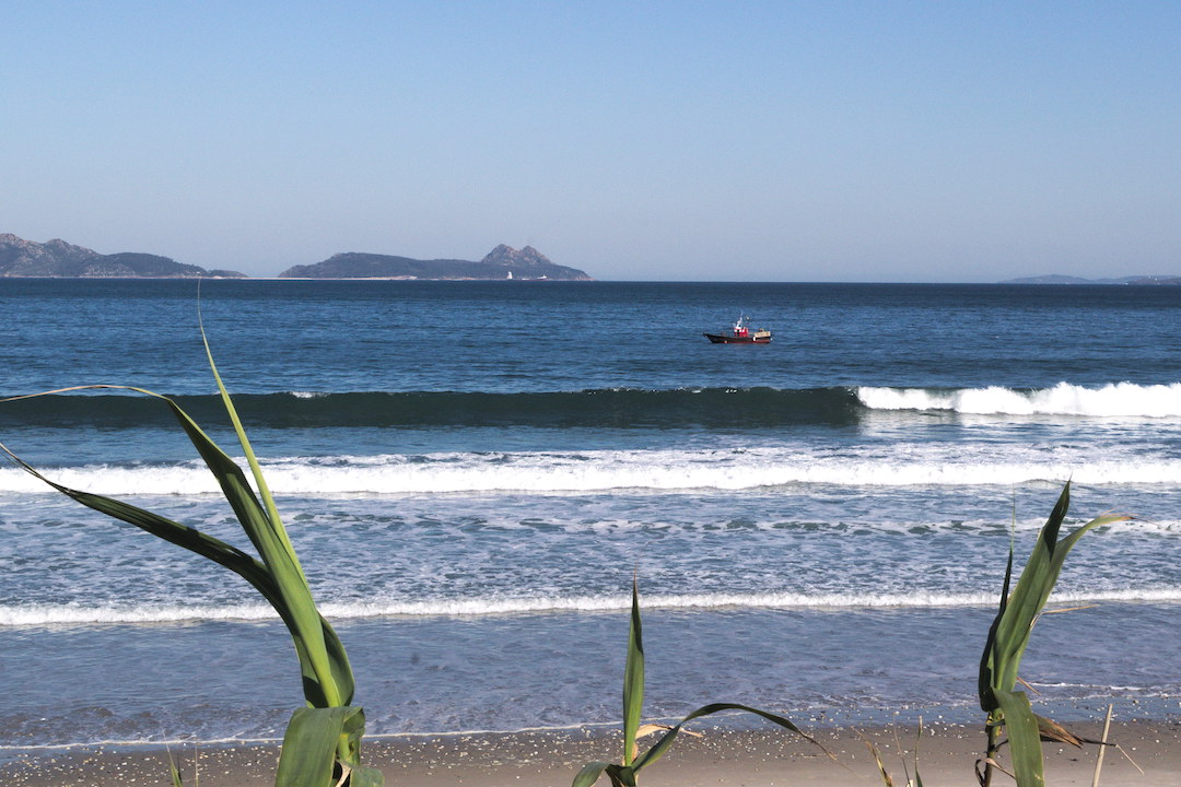 Picture of Patos beach in Galicia
