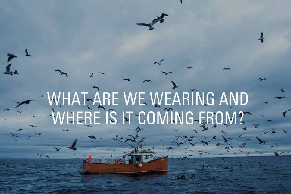 "Picture of a ship with sea birds around it and text saying ""What are we wearing and where is it coming from?"""